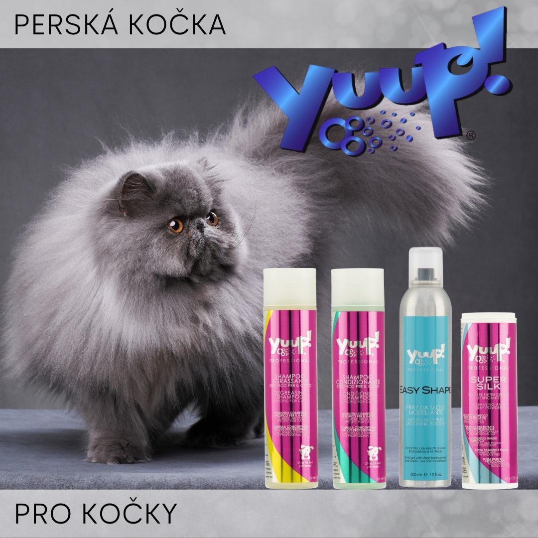 Odpověď na dotaz: Co použít pro perskou kočku?